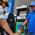 Potential for biofuel in Vietnam growing
